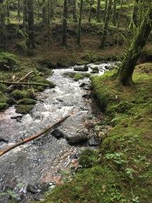Cork_Kilworth_Ballard_Waterfall_stream