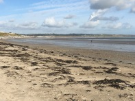 Co.Cork_Shanagarry_beach_view_to_Garryvoe_Beach
